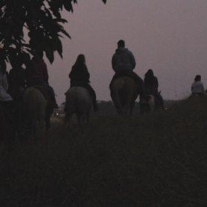Horse Weekend