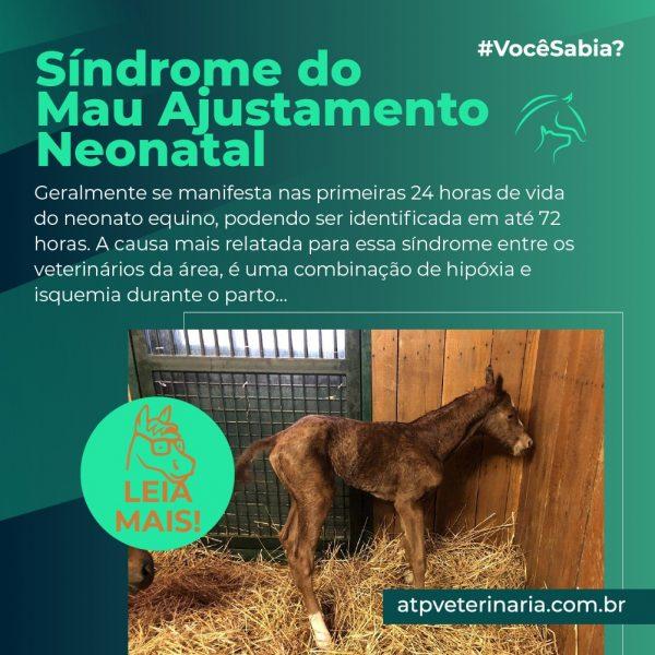 #VocêSabia? – Síndrome do Mau Ajustamento (SMA) Neonatal
