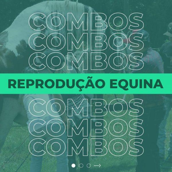 Reprodução de equinos: oportunidade profissional para você!